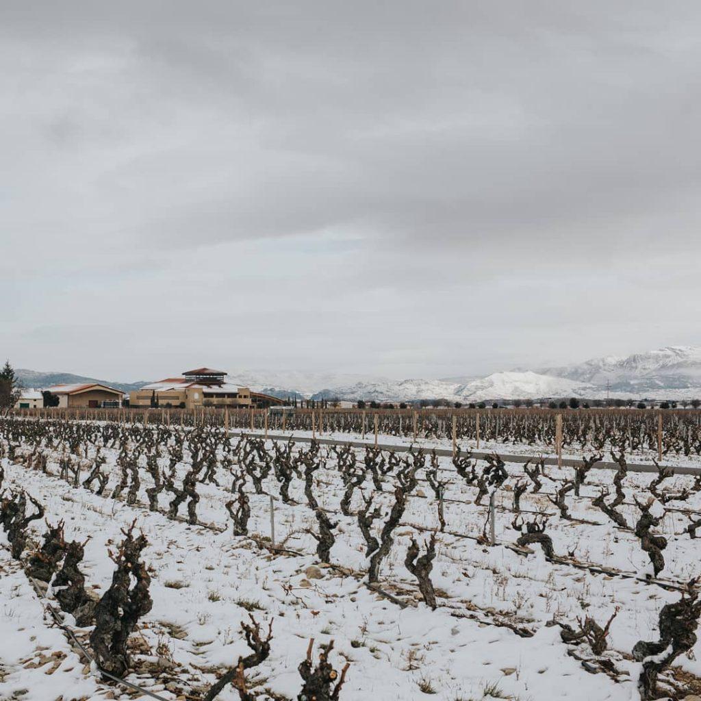Ruta del Vino Rioja Alta Nevada La Rioja