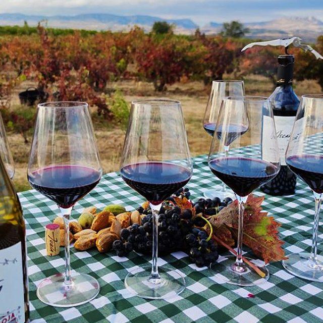Wine Tour a medida en Bodegas Tobía