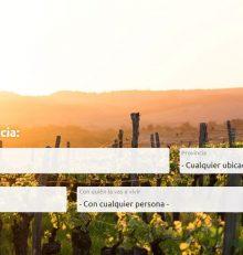 Potencia la promoción de tus actividades en la nueva plataforma de Rutas del Vino de España