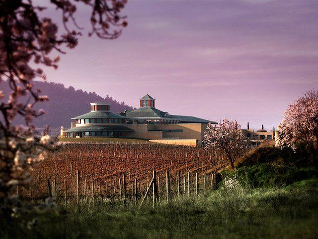 Museo del Vino Dinastía Vivanco
