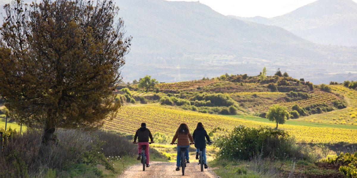 """""""Excursión al viñedo con bici eléctrica"""""""