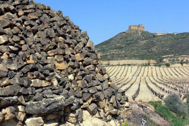 Briones – Castillo de Davalillo