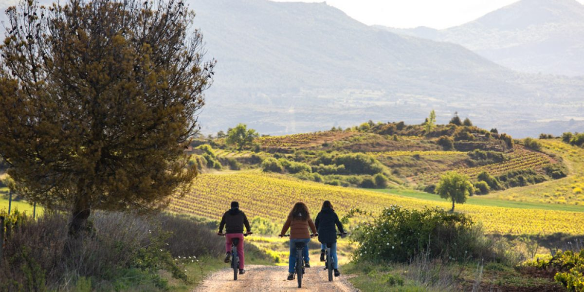 """""""Excursion to the vineyard with electric bike""""."""