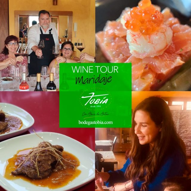 Introduction to food and wine pairing with Alina Castro Bodegas Tobía