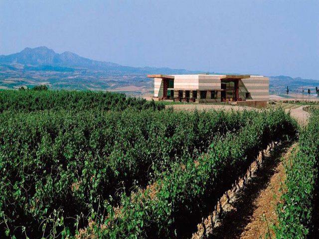 Campo Viejo Wineries