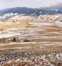 La Ruta del Vino Rioja Alta, cerca de ti todo el año