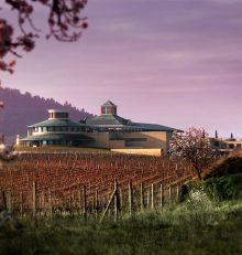Fundación Vivanco recupera el XIII Premio Internacional de Grabado y Vino